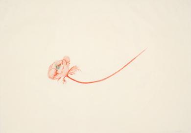 Little Bird by Valerie Hammond