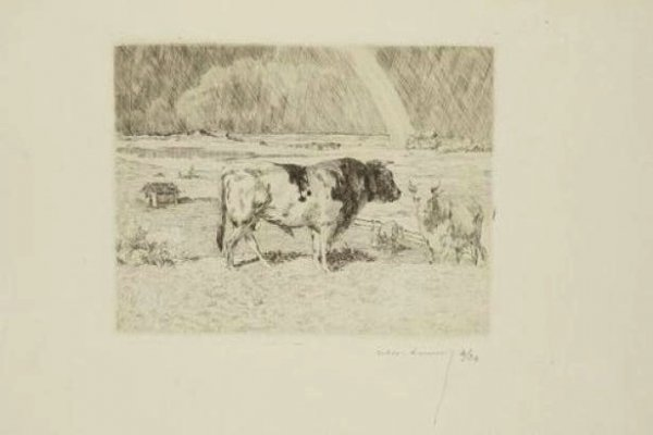 Taureau Dans Un Pré / Bull In A Meadow by Alexandre Lunois at
