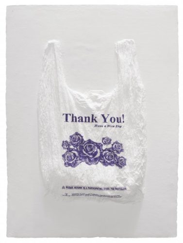 Thank You! Have A Nice Day Plastic Bag by Analia Saban