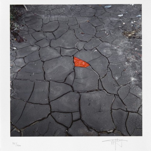 Red Leaves On Cracked Earth by Andy Goldsworthy at