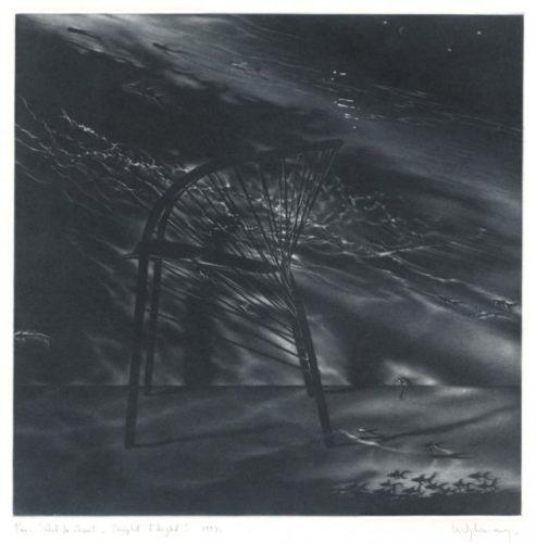 Vol De Nuit by Anne Dykmans at