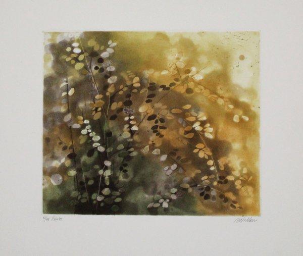 Fairlee by Anne Walker