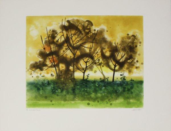 Meadowland by Anne Walker