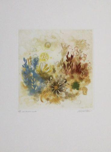 Midsummer by Anne Walker