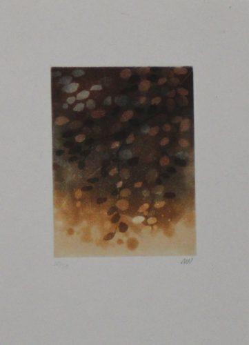 Untitled by Anne Walker