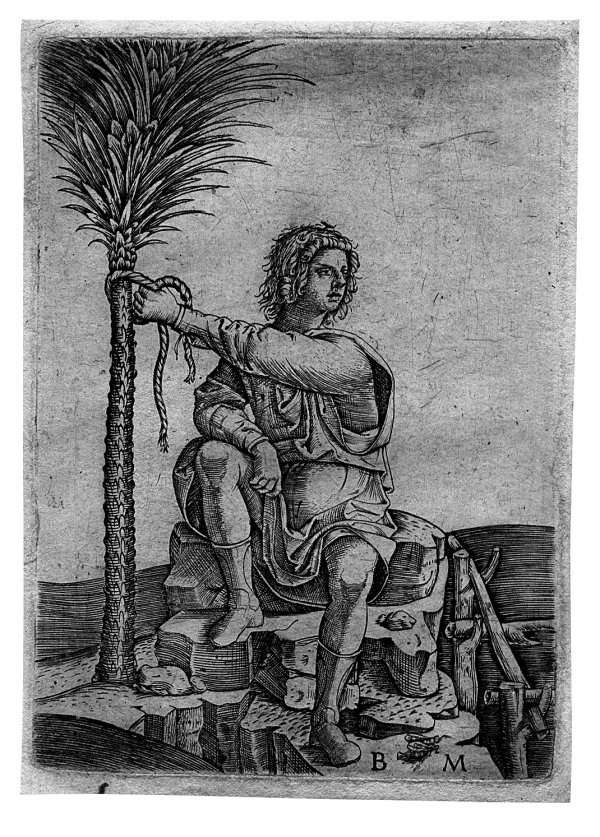 A Man Seated By A Palm Tree by Benedetto Montagna