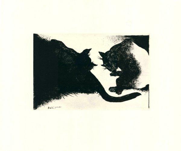 Nightcats by Bernd Rose