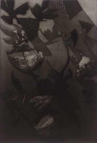 Plate V From Anemones by Bill Jacklin RA at