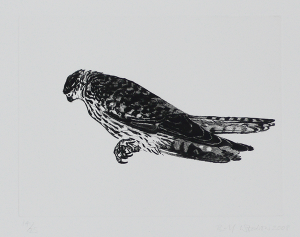 Kestrel by Bill Woodrow RA