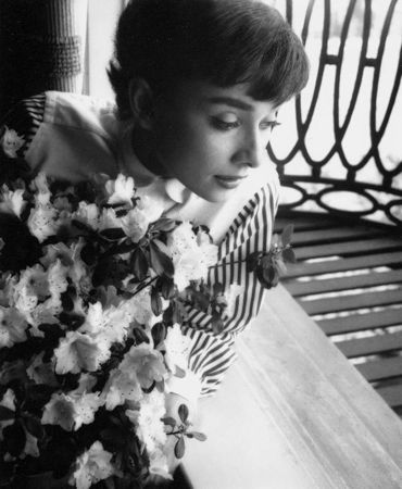 Audrey Hepburn Window by Bob Willoughby at