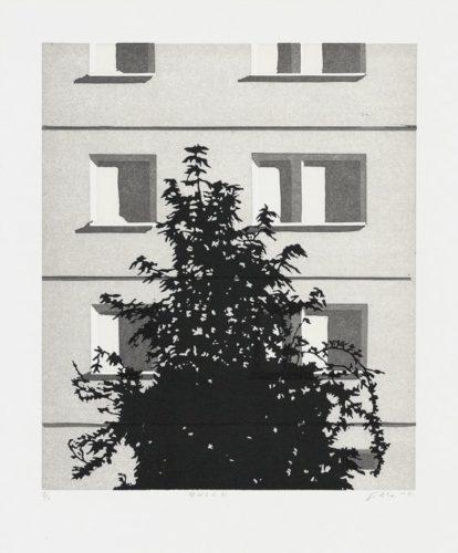 Busch by Claas Gutsche