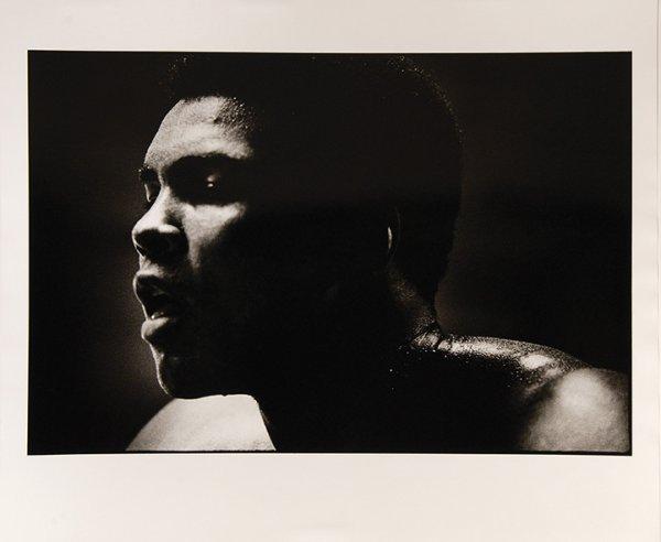 Portrait V by David King