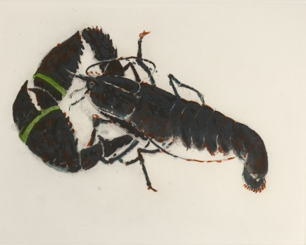 Lobster by Elizabeth Blackadder
