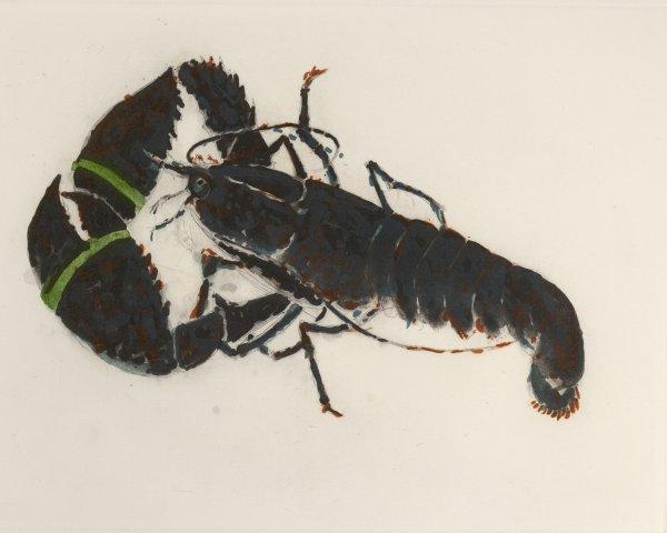 Lobster by Elizabeth Blackadder at