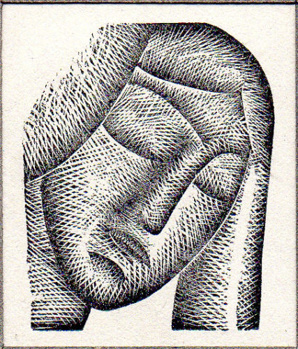 Woman's Head by Eric Gill