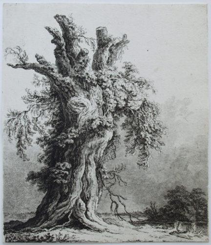 Großer Baumstumpf Vor Einer Flußlandschaft by Franz Gabet at