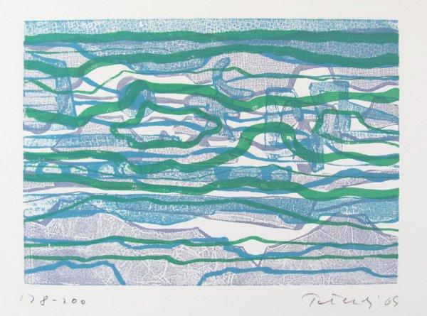 The Reef by Gabor Peterdi