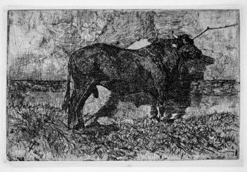 The Black Bull by Giovanni Fattori at Stanza del Borgo (IFPDA)