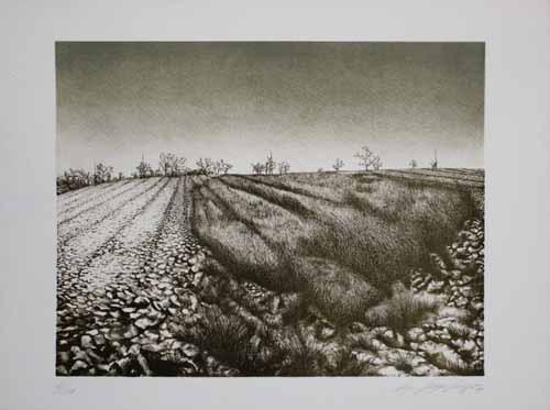 Landschaft by Hans-Jürgen Siegert