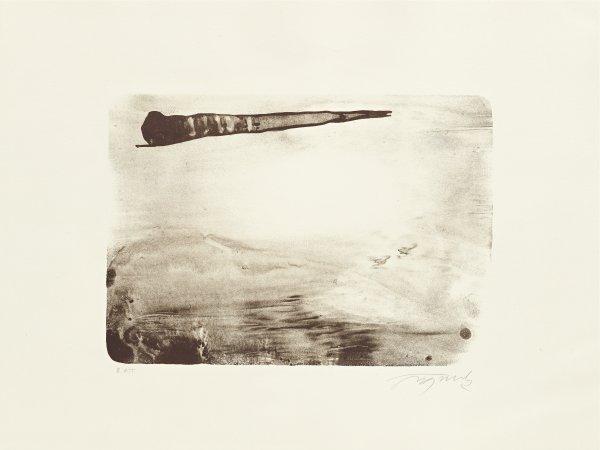 Palm by Hugo Fontela
