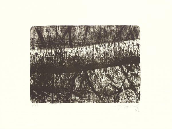 Tree by Hugo Fontela