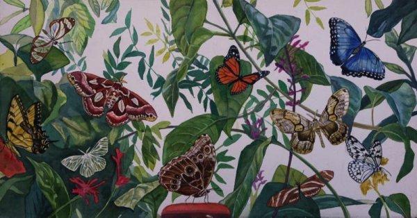 Butterflies by Jane E. Goldman