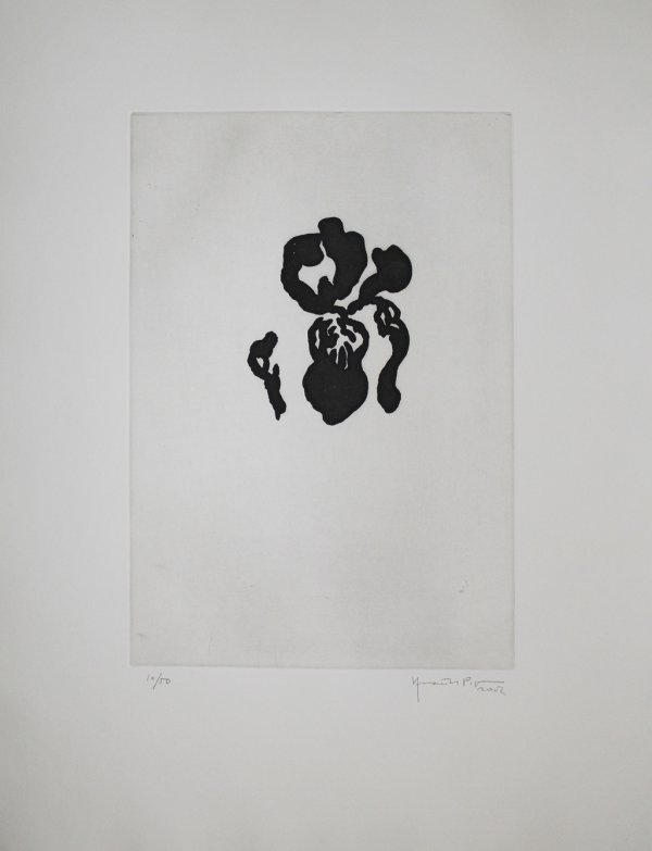 Iris Negre Iv / Black Iris Iv by Joan Hernandez Pijuan