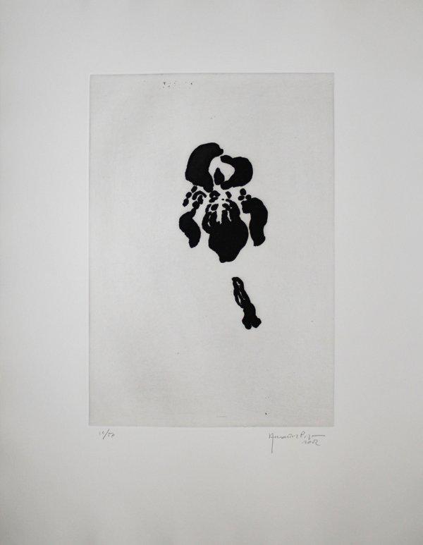 Iris Negre V / Black Iris V by Joan Hernandez Pijuan