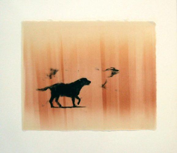 Lone Vii/xiv by Joel Janowitz