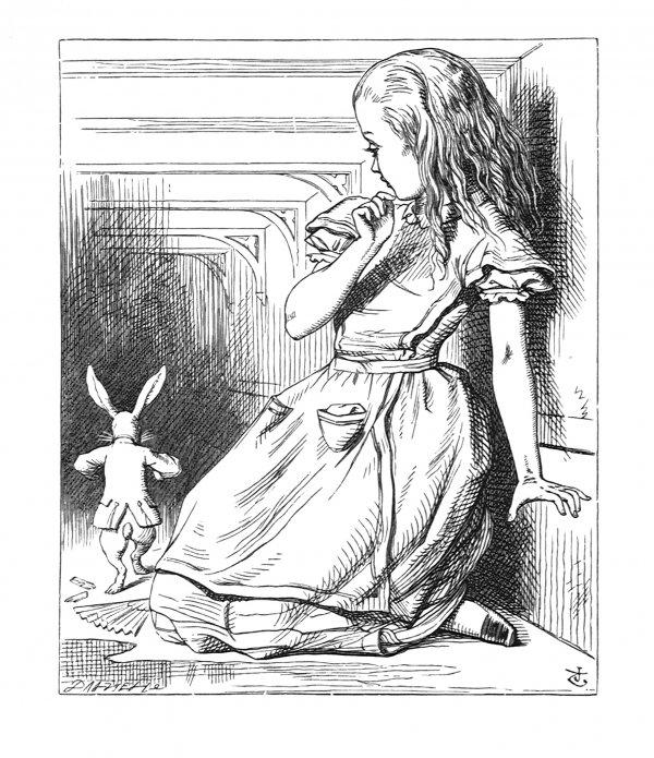 'oh! The Duchess, The Duchess! Oh! Won't She Be… by John Tenniel