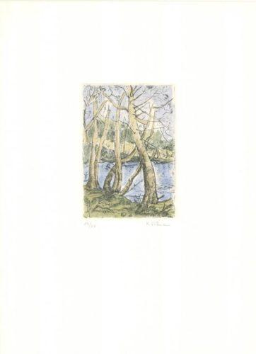 Bäume by Karoline Wittmann