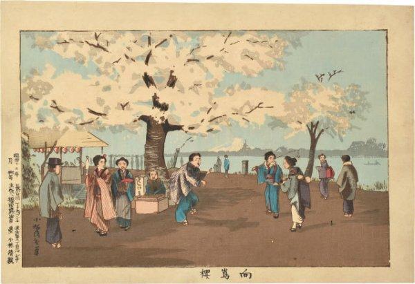 Cherry Blossom, Mukojima by Kobayashi Kiyochika