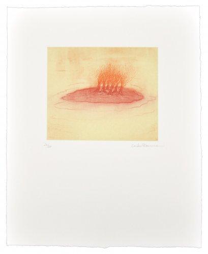 La Isla Enrojada by Leiko Ikemura