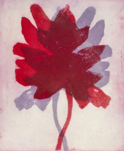 Leaves In Shadow by Nancy Azara at