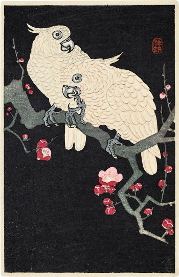 Two Cockatoo On A Branch Of Blossoming Plum by Ohara Koson (Shoson)