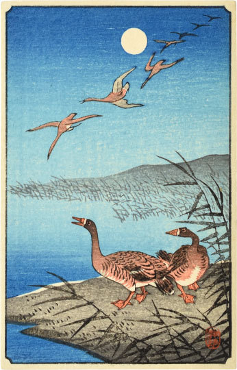 White-fronted Geese Among Reeds And In Flight by Ohara Koson (Shoson)