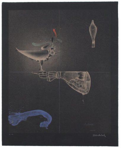 Falkenhandschuh / Falconer's Glove by Paul Wunderlich at