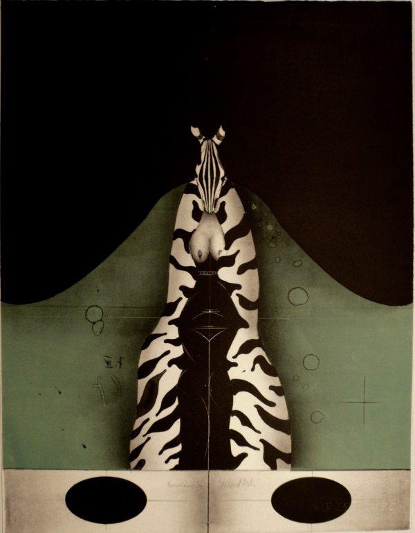 Zebra by Paul Wunderlich