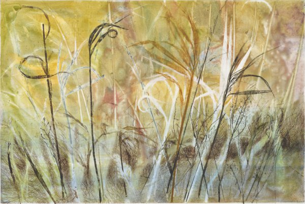 Field's Edge 11 by Paula Zinsmeister at