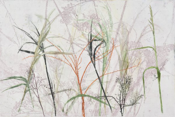 Field's Edge 14 by Paula Zinsmeister at