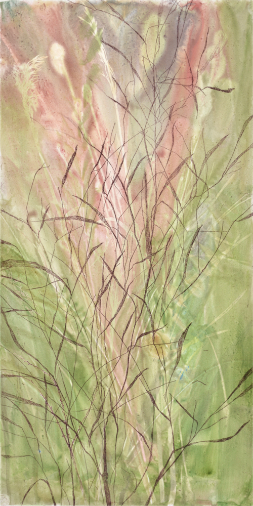 Field's Edge 16 by Paula Zinsmeister