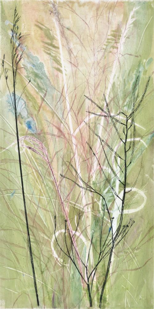 Field's Edge 17 by Paula Zinsmeister