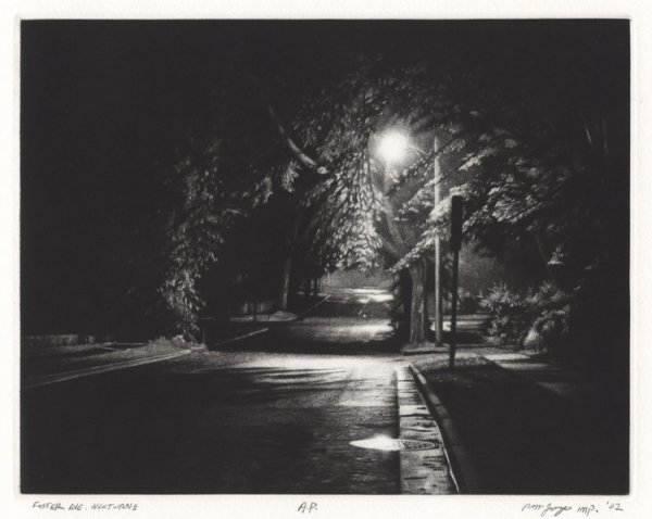 Foster Avenue Nocturne by Peter Jogo