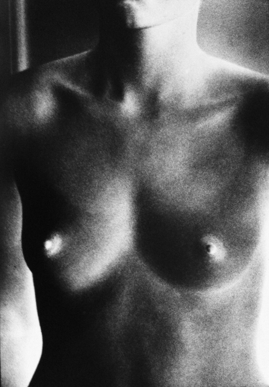 Nude / Negative (from In Situ) by Ralph Gibson