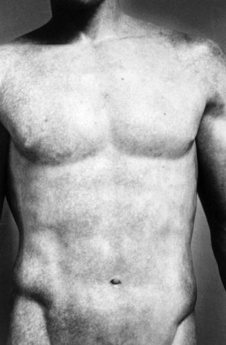 Torso (from Chiaroscuro) by Ralph Gibson at