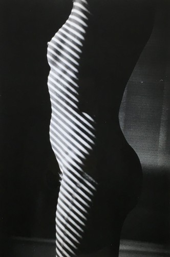 Tropism L'anonyme by Ralph Gibson