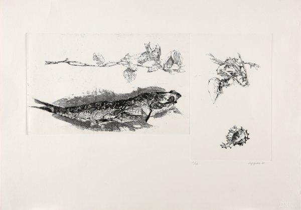 Studi by Renzo Vespignani