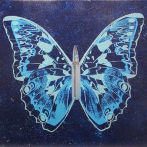 Blue Butterfly on Blue