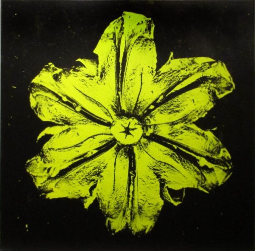 Power Flower N-3 (pistachio On Black) by Rubem Robierb at Rubem Robierb