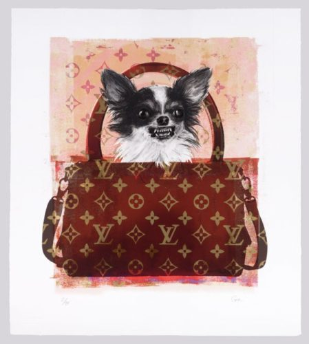 Louis Vuitton Dog by Shannan Gia